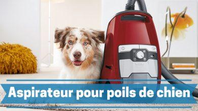 Photo de Meilleurs aspirateurs pour poils de chien et d'autres animaux en 2020.