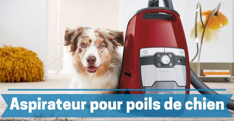 meilleur aspirateur pour poils de chien comparatif guide achat avis