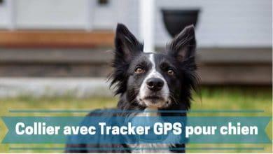 Photo de Les meilleurs collier avec traceur ou tracker GPS pour chien et autres animaux de compagnie en 2020