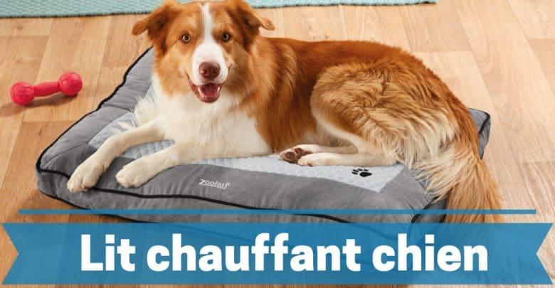 meilleur lit chauffant pour chien comparatif guide achat avis