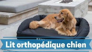 Photo de Les meilleurs lits ou paniers orthopédiques pour chiens en 2020.