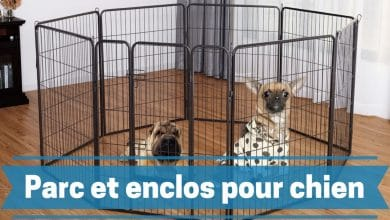 Photo de Meilleurs parcs pour chiens et enclos pour chiots ou animaux domestiques en 2020