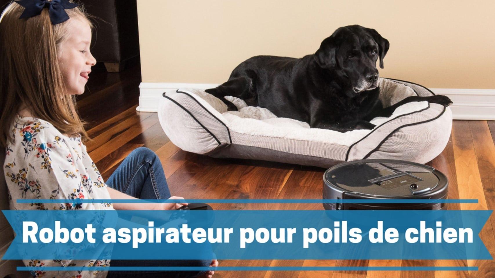 meilleur robot aspirateur pour poils de chien comparatif guide achat avis
