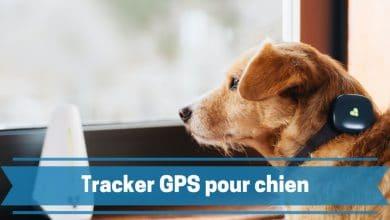 Photo de Meilleurs traceurs ou trackers GPS pour chien et autres animaux de compagnie en 2021