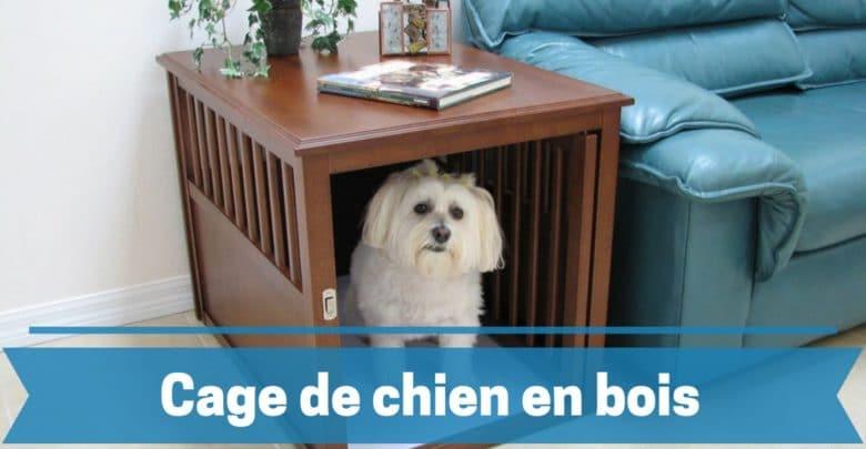 meilleure cage de chien en bois comparatif guide achat avis