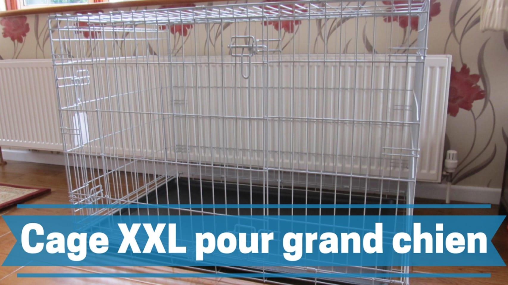 Photo de Les meilleurs cage XXL pour chien de grande taille 2020.