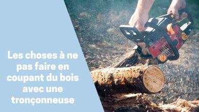 Photo de Choses que vous ne devriez pas faire lorsque vous abattez un arbre avec votre tronçonneuse