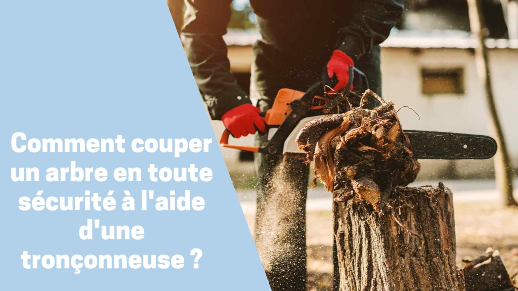 Photo de Comment couper un arbre en toute sécurité à l'aide d'une tronçonneuse ?