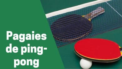Photo de Zoom sur les meilleures raquettes ou pagaies de ping-pong (tennis de table) en 2020 !