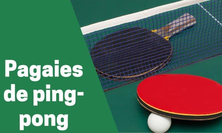 Selection des meilleures pagaies de ping pong ou tennis de table comparatif guide achat avis test