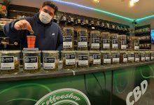 Photo de Choix d'un bon magasin de vente de CBD : quels sont les critères principaux?