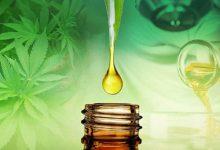 Photo de Les avantages du CBD et le dosage facile de l'huile de CBD